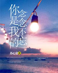小说角色江亦琛顾念的小说《你是我的念念不忘》全文章节免费在线阅读