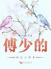 《傅少甜宠小娇妻》免费阅读全文,《傅少甜宠小娇妻》最新章节在线阅读