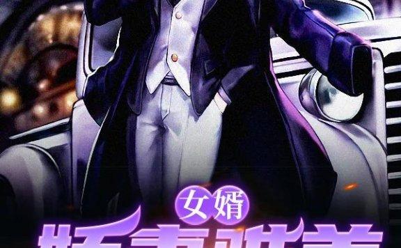 《女婿:娇妻难养》最新章节 主角是刘晨阳,徐璐全文免费阅读