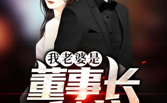 《我老婆是董事长秘书》苍穹双鹰的小说最新章节,萧炎,何英全文免费阅读