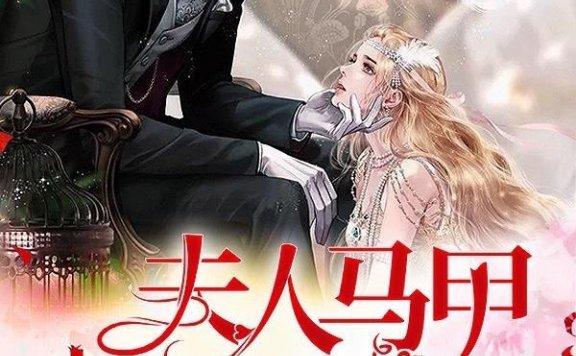 《九爷,夫人马甲被扒了》一瓶甜酒的小说最新章节,傅温馨,傅傅全文免费阅读